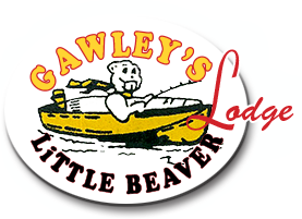 Gawleys Little Beaver Logo
